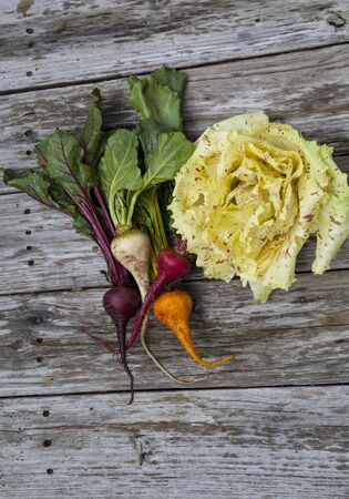 Vegetable group of red, yellow and orange beets with Castelfranco radicchio lettuce, which has yellow leaves that have red speckles.