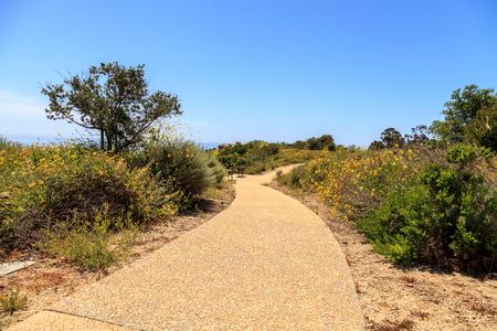 ニューポート コースト ハイキング トレイルに沿って緑の植物の近くにクリスタル コーブ、カリフォルニア州では春