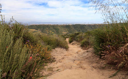 Aliso and Wood Canyons Wilderness Park hiking paths in Laguna Beach, California in spring 免版税图像
