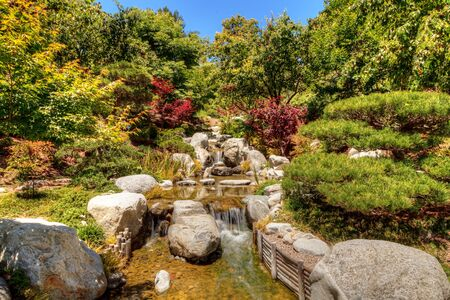 cascade: Relaxing, zen like pond with a waterfall, koi fish and tropical plants. Stock Photo