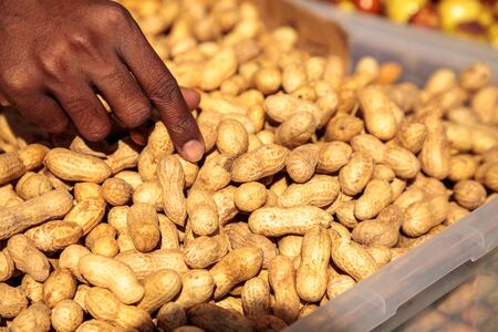 Crate of organic peanuts still in a shell and sold at a farmers market