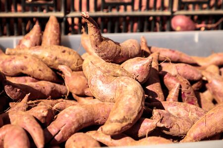 Bushel of red brown yams sold at a farmers market