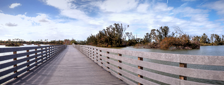 Boardwalk goes through the swamp at Lakes Park in Fort Myers, Florida and displays the damage done by hurricane Irma with uprooted trees.