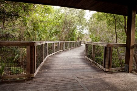 Wooden secluded, tranquil boardwalk along a marsh pond in Freedom Park in Naples, Florida
