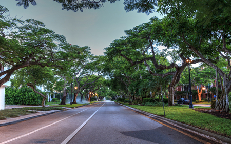 Tree-lined side street near the shops along 5th Street in Old Naples, Florida. Banco de Imagens