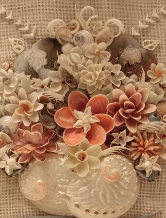 Seashell floral background display with pink shells, white shells, and a variety of textures.