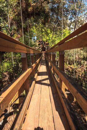 Tower, bridge, and Bird watching walkway boardwalk in Myakka State Park in Sarasota, Florida