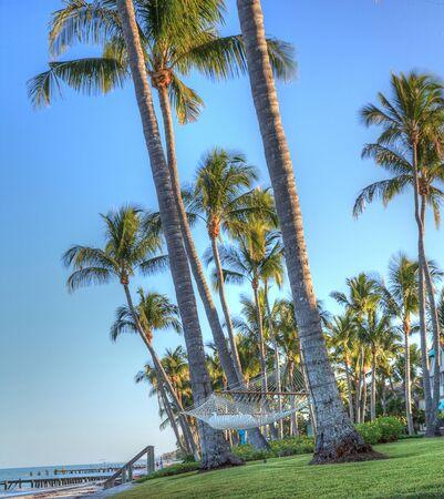 Hammock strung between palm trees overlooking the ocean and beach in Sarasota, Florida