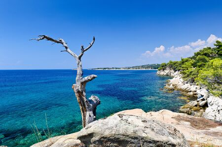 sithonia: Sithonia west coast, Greece