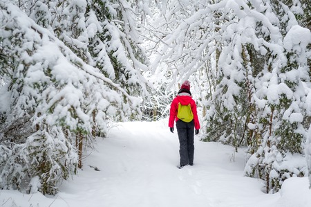 walking alone: Woman with small backpack walking alone in snowy winter forest Stock Photo