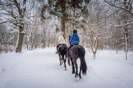 Two riders on the horses at beautiful winter snowy forest. Back view.
