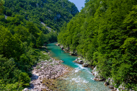 hill of tara: Deep canyon of Tara. Summer landscape with mountain river and forests at hills. Popular sightseeing and rafting tours spot, Montenegro.