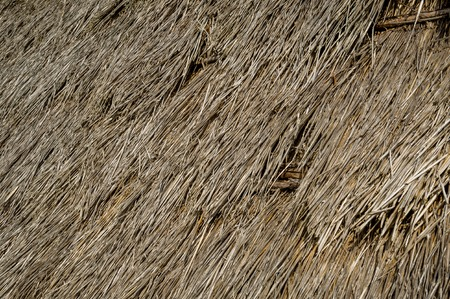 thatched roof: Pattern of the old thatched roof of traditional style Atlantic ocean explorers house. Santana, Madeira island, Spain. Stock Photo