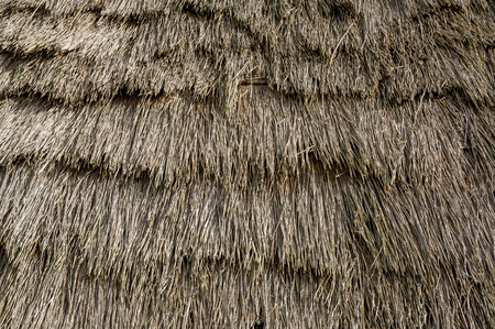 thatched roof: Thatched roof texture of old colonists house at Madeira island. Close view of straw going by an angle from the top of the roof.