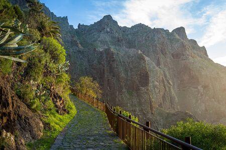 and hiking path: Walking path on the rocks