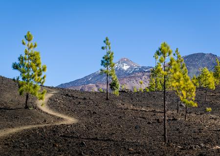Attractive volcano hiking path. Stock Photo - 114302245