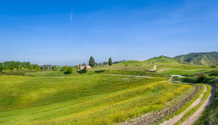 Road to Certaldo with beautiful Tuscany region traditional fields landscapes. Italy Stock Photo