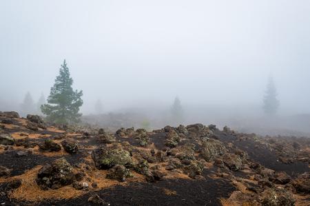 Chinyero volcano hiking path in the black desert. Adventure activities at Teide national park, Tenerife island, Spain.
