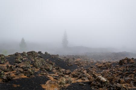 Black volcano sand hiking path around Chinyero crater. Teide National park. Tenerife island.