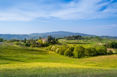 Toscano fields at sunset light 版權商用圖片 - 121251004