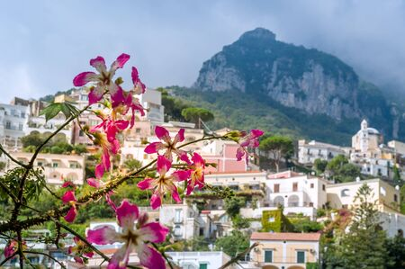 Blurred view of Positano village at the background of flowers. Amalfi coast, Italy.