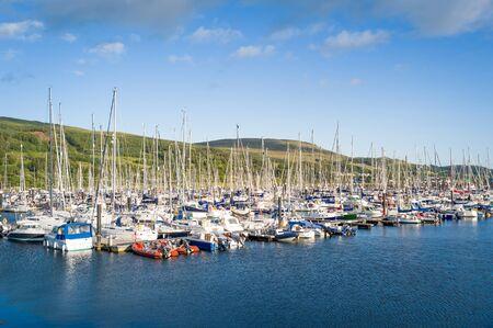 Forest of sailing yacht masts at Largs marina. Scotland.