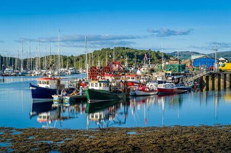 Tarbert harbor with colorful fishermans boats and sailing yachts docked. Hebrides, Scotland. 版權商用圖片