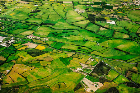 Aerial view of green farmland