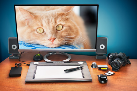 Post production desk with digital camera, memory cards, graphic tablet, and monitor to advertise youself and your work. Monitor with cat photo. photo