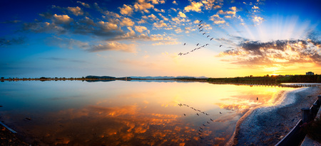 generates: Sunset on the pond with perfectly calm water that generates amazing reflections Stock Photo