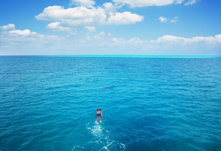 Snorkel in tropical clear water