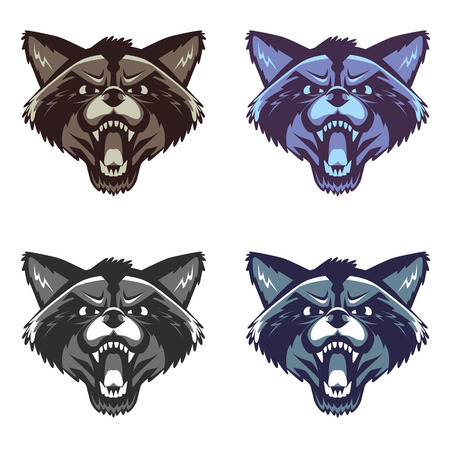 angry: Vector image of an angry raccoon face on white background Illustration
