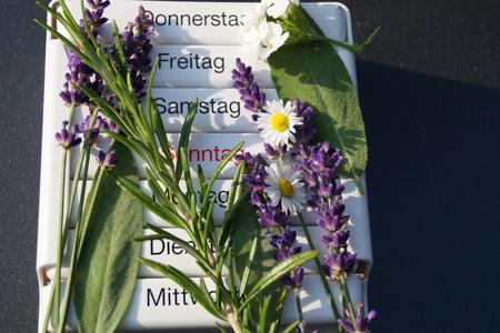 Homeopathy - the alternative medicine Reklamní fotografie