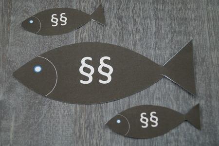 European fishing law