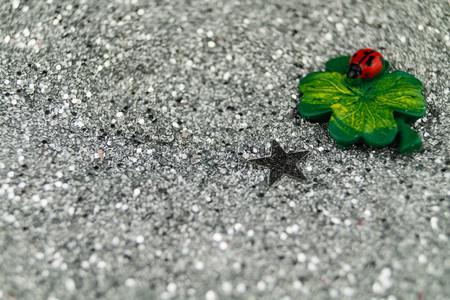 Horseshoe and Ladybuck as Lucky Charm