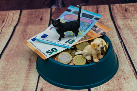 What are the costs of a pet Reklamní fotografie