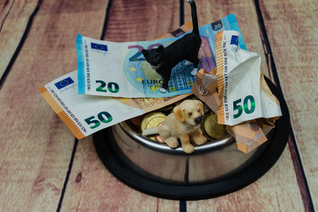What are the costs of a pet Stok Fotoğraf
