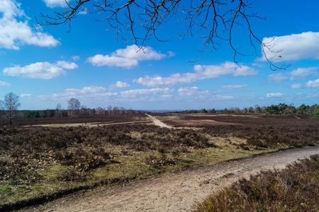 Segelflugplatz im Naturschutzgebiet Fischbeker Heide Standard-Bild