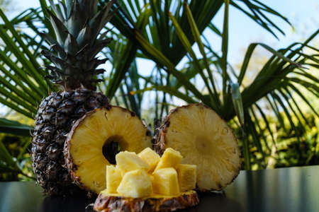 sliced Pineapple in frot of palm trees