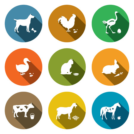 Pets icon set on a colored background