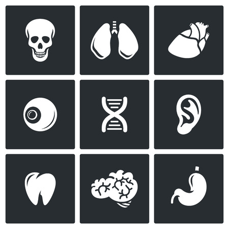 livelihoods: Vector Isolated Flat Icons collection on a black background for design Illustration