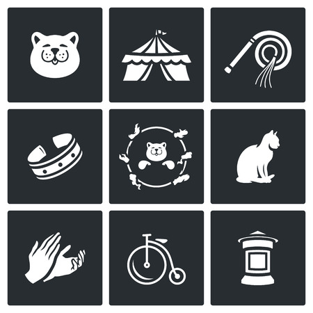 applause: Cat, Circus, Training, Accessories, View, Jumping, Animal, Hands, Transport, Announcement.