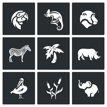 Flora and fauna of the African country Illustration
