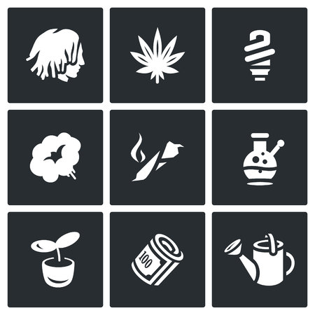 cigar: Person, Plant, Bulb, Smoke, Cigar, Cannabis, Finance, Watering can