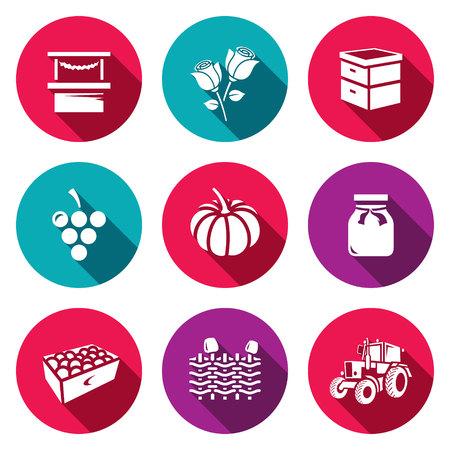 floriculture: Trade, Floriculture, Apiary, Macaroni Vegetable Canning Gardening Farm Transportation