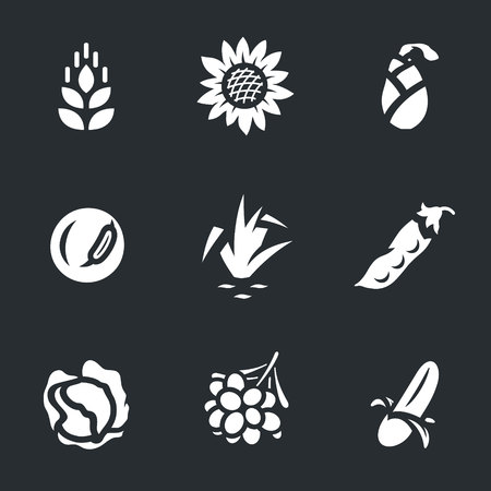 Vector Set Harvest Icons.