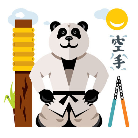 Vector Karate Panda. Flat style colorful Cartoon illustration.