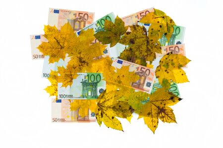 end times: Banknotes and leaves as cutout