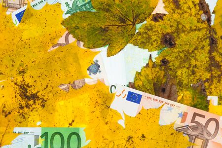end times: Leaves and Bank notes to a smooth surface compressed