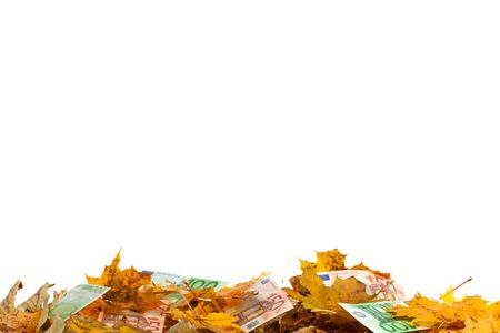 Studio photography of mixed bank notes and leaves Stock Photo - 15329741